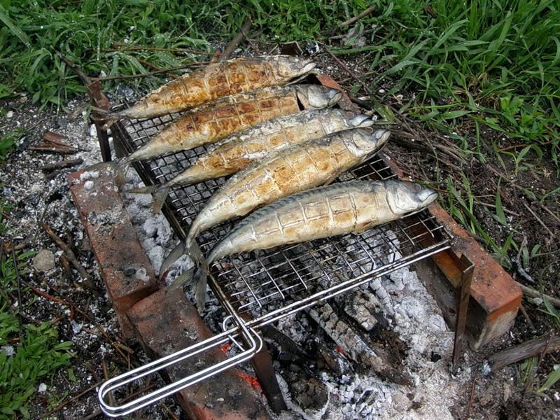 рыбные блюда, рыба на костре