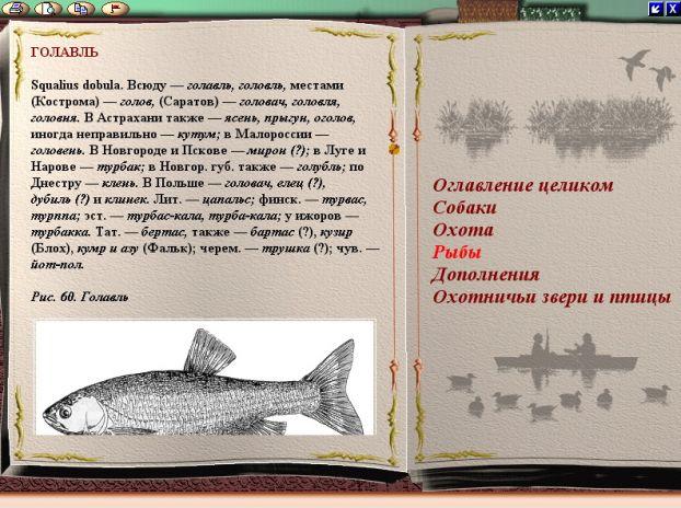 топик по английскому про рыбалку