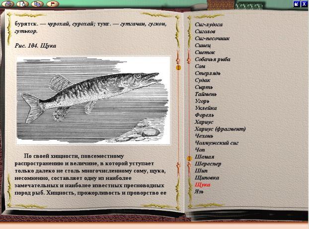 сабанеев рыбная ловля  равно снасти