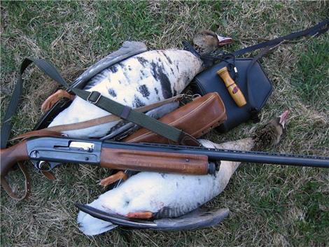 Охота на гуся в Краснодарском крае