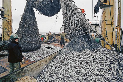 рыбалка работа екатеринбург