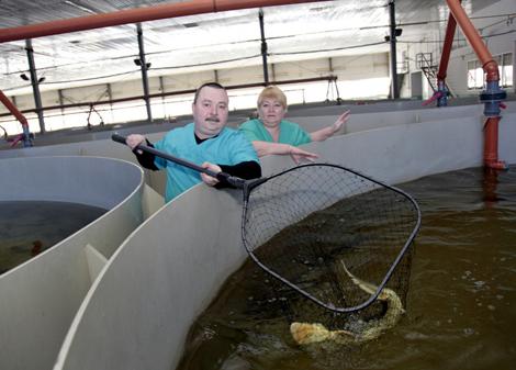 юмор: семинар по фермерскому рыбоводству можете купить православные