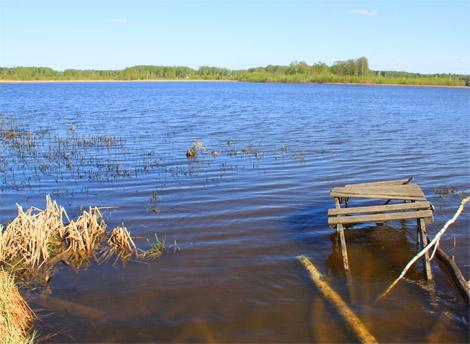 рыбалка на пяловском водохранилище 2016