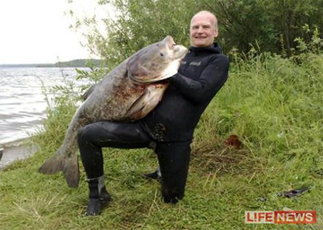большой компенсаторный карьер рыбалка