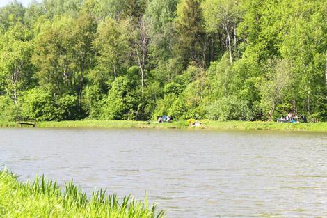 Рыбалка на Сенеже, где ловить на Сенеже, озеро Сенеж, рыбхоз Сенеж, рыбалка, Сенежское озеро, рыбалка на Сенежском озере, рыбное хозяйство Сенеж
