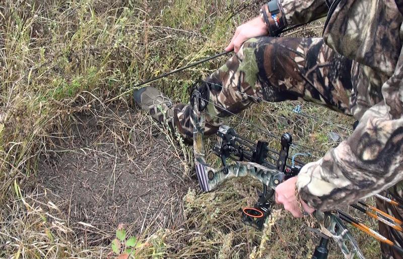 где ловить фазанов