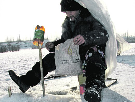 клев на холоде