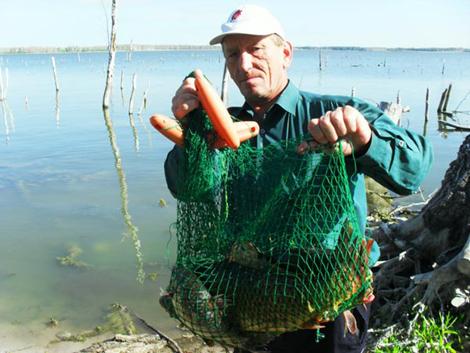 прогноз клева рыбы в челябинской области рыбхоз