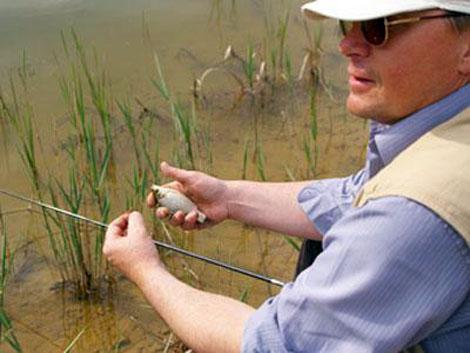 ловля рыбы в сасово
