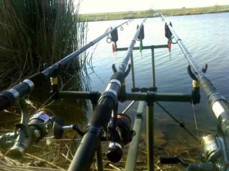 квадропод для рыбалки купить