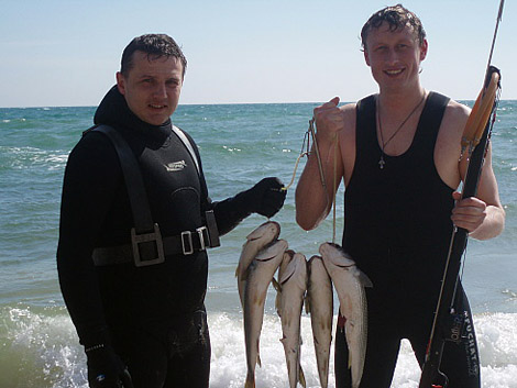 когда можно ловить кефаль в черном море
