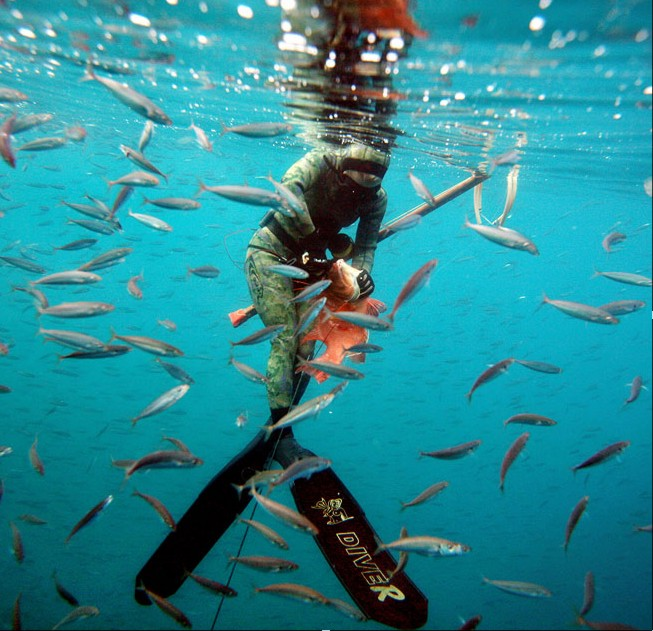 Карты глубин онлайн фотографии подводной охоты