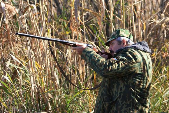 ...Тверской, Ульяновской и на Севере Московской области с 17 апреля открывается сезон охоты.