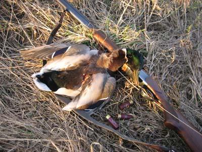 При осуществлении охоты в весенний сезон охотник обязан иметь при себе охотничий билет...