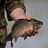 способы рыбалки спиннингом