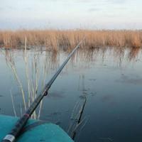 о запрете рыбалки по нсо