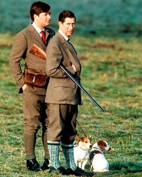 охота в Испании, принц на охоте, принц Уильям на охоте, охота на кабана, охота на оленя, охота видео, охота 2013, охота бесплатно, бесплатная охота, лучшие охоты, охота и рыбалка,  сезон охоты, охота на гуся, охота в области